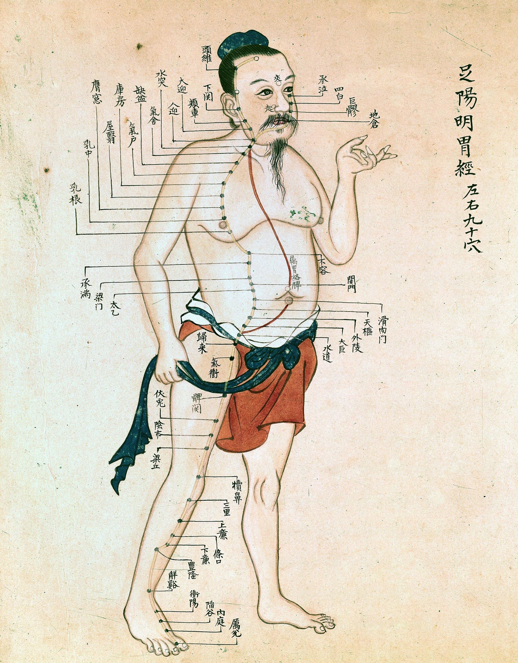 Agopuntura: può curarti il mal di schiena? - AlmaPhysio..