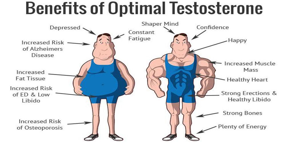 Testosterone: 8 modi di aumentarlo naturalmente
